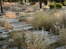 قبر در ابن بابویه در شیپور-عکس کوچک
