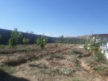 باغچه با ویلا970 متر  در شیپور-عکس کوچک