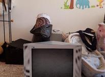 تلویزیون  سالم در شیپور-عکس کوچک