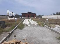 2250 متر زمین در طاووسیه با بنا و استخر در شیپور-عکس کوچک