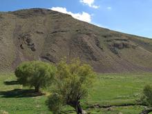 زمین کشاورزی مناسب ویلا سازی 3700 متر  در شیپور-عکس کوچک