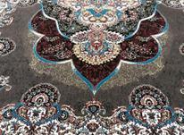 فرش پانیذ گردویی اهورا آبی  در شیپور-عکس کوچک