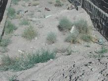 زمین 100 متری با سند تک برگ فروش فوری در شیپور-عکس کوچک