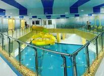 آموزش حرفه ای شنا در شیپور-عکس کوچک