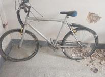 دوچرخه سادهسالم در شیپور-عکس کوچک