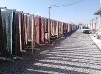 قالیشویی اسلامشهر گلستان  در شیپور-عکس کوچک