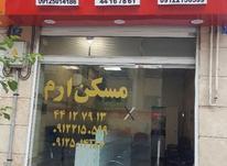 استخدام مشاور املاک  خانم وآقا  در شیپور-عکس کوچک