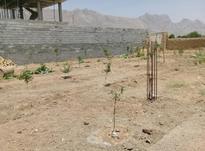 باغ بادام 500متری در شیپور-عکس کوچک