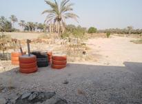فروش زمین و باغ  در شیپور-عکس کوچک
