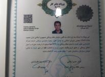 متخصص تغذیه شیراز  در شیپور-عکس کوچک