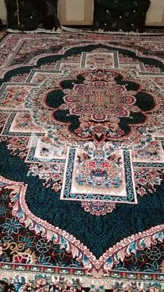 فروش 8تخته فرش 12متری نو پلمب در گروه خرید و فروش لوازم خانگی در بوشهر در شیپور-عکس1