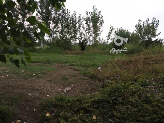 150متر زمین مسکونی  در گروه خرید و فروش املاک در مازندران در شیپور-عکس1