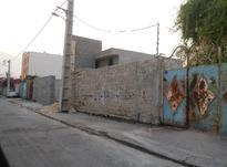 فروش زمین مسکونی عسلویه (نخل تقی) در شیپور-عکس کوچک