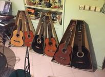فروش گیتار توسط مدرس  در شیپور-عکس کوچک