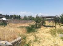 باغ در کردان کرج در شیپور-عکس کوچک