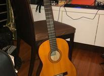گیتار سی 40 در شیپور-عکس کوچک