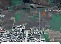 زمین کشاورزی 1000 متری علی اباد در شیپور-عکس کوچک