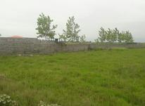 فروش زمین 1500متری سند دار تازه آباد چاف  در شیپور-عکس کوچک