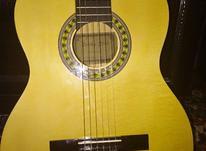 گیتار     تمیز  در شیپور-عکس کوچک