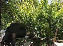 فروش باغ 800 متری  در کردزار شهریار  در شیپور-عکس کوچک