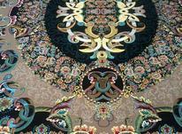 فرش کاشان طرح ویولت در شیپور-عکس کوچک