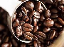 قیمت عمده دون قهوه سرجیو/ فروش دان قهوه سرجیو در شیپور-عکس کوچک