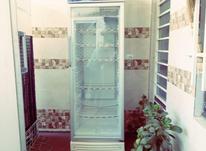 یخچال ایستاده تک درب ویترینی مغازه در شیپور-عکس کوچک