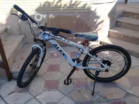دوچرخه دنده ای مدل ALEX سایز 24 کاملا نو نو در گروه خرید و فروش ورزش فرهنگ فراغت در فارس در شیپور-عکس1