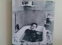 تخته شاسی چارلی چاپلین در شیپور-عکس کوچک