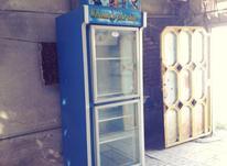 یخچال ویترینی ایستاده ی مغازه 2 درب در شیپور-عکس کوچک
