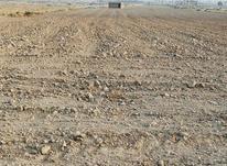 4هکتار زمین کشاورزی چاهورز  در شیپور-عکس کوچک