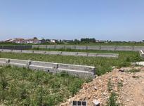 زمین با کاربری مسکونی محمودآباد در شیپور-عکس کوچک