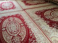 فرش 700شانه نخی در شیپور-عکس کوچک