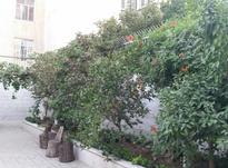 180متر 3خواب شهرک گلستان قایم  در شیپور-عکس کوچک