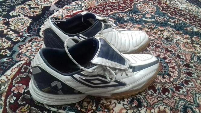 فروش کفش فوتسال(کارکرده) در گروه خرید و فروش ورزش فرهنگ فراغت در گلستان در شیپور-عکس1