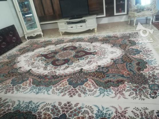 فرش کرم 700شانه در گروه خرید و فروش لوازم خانگی در گلستان در شیپور-عکس1