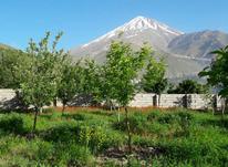 ویلا باغ 80 کیلومتری تهران 1300متری در شیپور-عکس کوچک