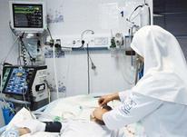 استخدام پرستار در مازندران در شیپور-عکس کوچک