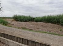 زمین 1200 علی آباد کتول  در شیپور-عکس کوچک