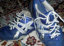 کفش اسیکس اسپورت44 در شیپور-عکس کوچک
