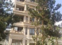 فروش آپارتمان 220 متری در پاسداران در شیپور-عکس کوچک