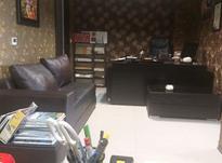 منشی در دفتر وکالت در شیپور-عکس کوچک