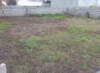 فروش زمین با کاربری مسکونی  در شیپور-عکس کوچک