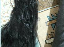 موی طبیعی 170شاخه در شیپور-عکس کوچک