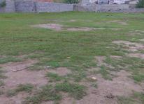 فروش زمین مسکونی سنددار  در شیپور-عکس کوچک