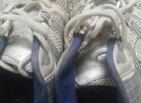 فروش کفش برند در شیپور-عکس کوچک