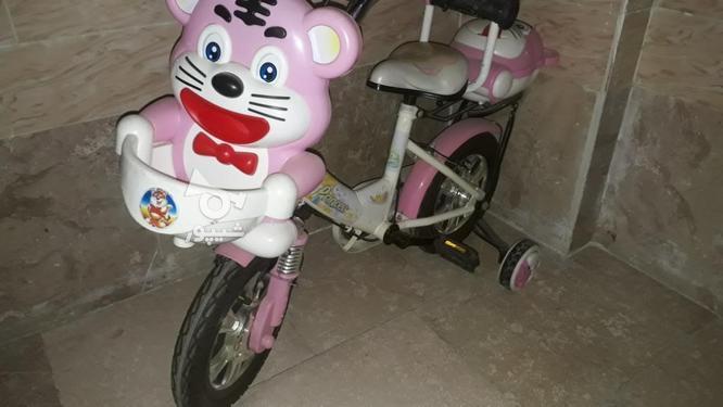 دوچرخه کودک  در گروه خرید و فروش ورزش فرهنگ فراغت در تهران در شیپور-عکس1