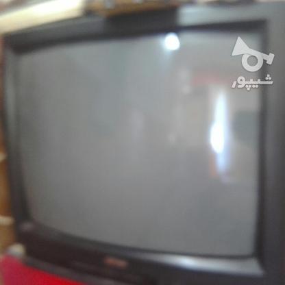 تلویزیون 21اینج و 14 اینج سالم ودر حد نو در گروه خرید و فروش لوازم الکترونیکی در فارس در شیپور-عکس1