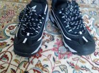 کفش پسرانه نو نو سایز 39 در شیپور-عکس کوچک