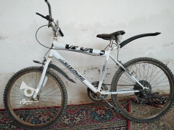 دوچرخه 24 سالم  در گروه خرید و فروش ورزش فرهنگ فراغت در فارس در شیپور-عکس1